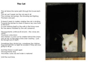 The Cat jpeg