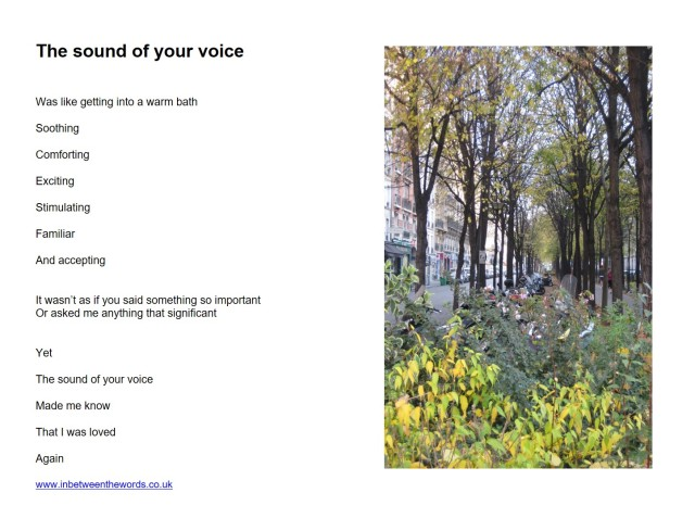The sound of yoru voice